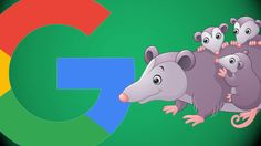 Everything you need to know about Googles Possum Algorithm Update by World Web Solutions Indore | SEO-SMO-Indore   For those of you wondering what Possum is its the name we in the local search community decided to give the massive Local algorithm update that happened September 1 2016.  Phil Rozeksuggested the name pointing outthat itis fitting since many business owners think their Google My Business listings are gone when in fact they are not. They have just been filteredtheyre playing…