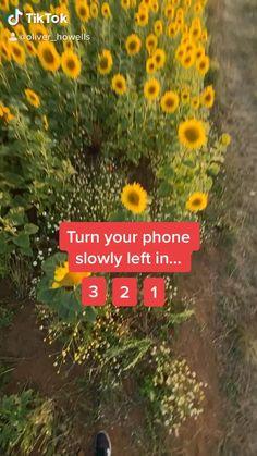 Photography Tips Iphone, Photography Basics, Photography Editing, Creative Photography, Portrait Photography, Nature Photography, Photo Editing, Photo Hacks, Photo Tips