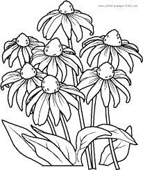 flower colouring pages - Google Search
