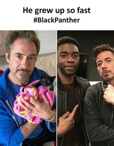 Read these & marvel memes funny the avengers Avengers Humor, Marvel Jokes, Marvel Avengers, Hero Marvel, Funny Marvel Memes, Dc Memes, Marvel Actors, Crazy Funny Memes, Really Funny Memes