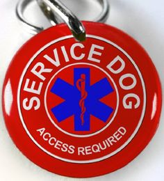 Service Dog Customized Pet Id Red Service Dog Id Regular 100 ** Read more  at the image link. Pet Tags, Dog Id Tags, Dog Diapers, Dog Agility, Dog Collar Tags, Pet Id, Therapy Dogs, Dog Memorial, Dog Travel