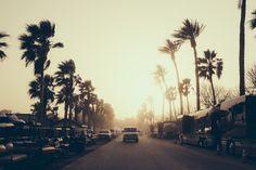 Coachella 2014 Photo Credit: Robin Harper