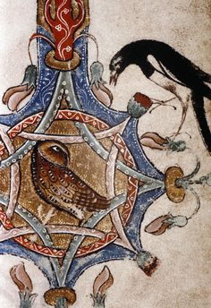 Tawny owl and magpie.  English birds from 'The Ormesby Psalter'.   MS.Douce 366.    13th c.
