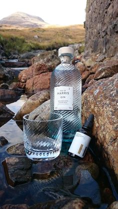 harris gin - Google Search
