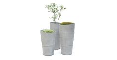Palma planters by Rainer Mutsch for Eternit Flower Planters, Planter Pots, Flowers, Landscaping, Palms, Window Boxes, Garden Planters, Yard Landscaping, Container Flowers