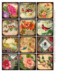 719. Flora Fauna 2.5-inch squares