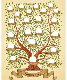 Family Tree Template - 29+ Download Free Documents in PDF , Word ...