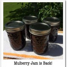 ... Mulberry Jam on Pinterest   Mulberry Recipes, Mulberry Pie and Jelly