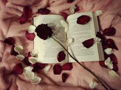 #books #Photography #rose Rose, Books, Photography, Pink, Libros, Photograph, Book, Photography Business, Roses
