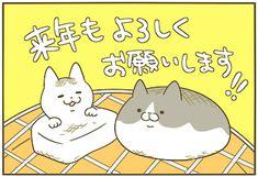 大晦日 | うちの猫がまた変なことしてる。【猫まんが】
