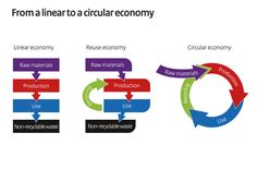 In trying to prevent the total collapse of our natural ecosystem, we can work toward building a circular ecosystem of goods production and consumption. The goal of a circular economy. Economies Of Scale, Circular Economy, Natural Ecosystem, National Laboratory, Economic Systems, Got Quotes, Best Credit Cards
