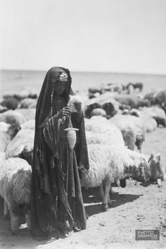 Bedouin girl & sheep. Shepherdess spinning. Beersheba, Palestine. 1932 August. Photograph: Matson Collection