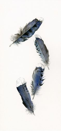Love the form of the feathers, but I'd like for the colors to be slightly brighter.