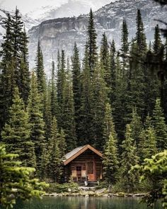 Lake Cabins, Cabins And Cottages, Forest Cabin, Picture Places, Cabin In The Woods, Cabins In The Mountains, Mountain Photos, Little Cabin, Cozy Cabin