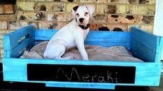 55 πανέμορφα κρεβατάκια σκύλων απο παλέτες!