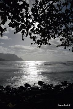 Kauai in the Moonlight, Instant Download Photography, Black and White Photography, Moonlight Photography, Printable Download - pinned by pin4etsy.com