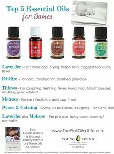 Top 5 Essential Oils For Babies