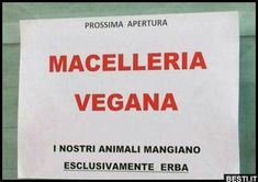 Macelleria vegana | BESTI.it - immagini divertenti, foto, barzellette, video Slogan, Funny Pictures, Funny Pics, Einstein, Haha, Funny Memes, Thoughts, Signs, Smile