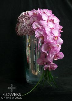 Light pink hydrangea and phalaenopsis orchids in a tall mirrored vase. Flowers of the World retail Collection featuring unique arrangements for Valentines Day 2015 #loveshines. Visit us at www.flowersoftheworld.com.