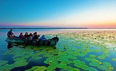 in delta dunarii barca