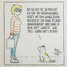 """Gefällt 1,462 Mal, 45 Kommentare - Stefanie Bamberg (@katzundtinte) auf Instagram: """"Man muss sie einfach lieben. #weltkatzentag"""""""
