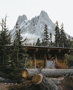 Where the Wild Things Are Country Living Decor, Beach Wood, Cabin Design, House Built, Cabin Homes, Handmade Home, Adventure Awaits, Animal Shelter, The Great Outdoors
