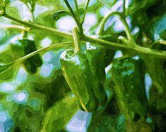 I uploaded new artwork to fineartamerica.com! - 'A Green Bell Pepper Plant' - http://fineartamerica.com/featured/a-green-bell-pepper-plant-lanjee-chee.html via @fineartamerica