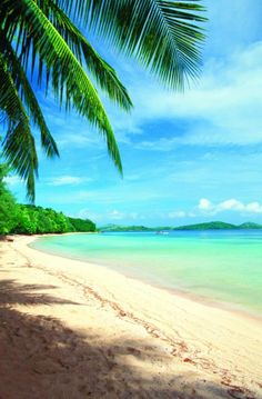 Sunshine, sand, gentle breeze..all that's missing is you @Stephie James Couture Portraits Island Fiji http://www.turtlefiji.com/Accommodation/Rates-and-Special-Offers/#.U21Stlzvsds