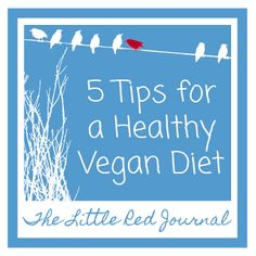 5 Tips for a Healthy Vegan Diet | The Little Red Journal | #vegan #healthy #diet