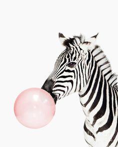 Pink Digital Art - Zebra Pink Bubble Gum Minimalistic Modern Art Kids Room by Julia Emelianteva Black And White Aesthetic, Pink Aesthetic, Kids Wall Decor, Wall Art Decor, Kids Room Art, Art For Kids, Kids Rooms, Zebra Print Walls, Image Maker