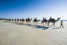Tourists riding on camels on Cable Beach, Broome, Western Australia, Australia, Pacific - Michael Runkel / robertharding/Getty Images