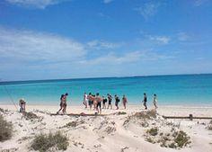 Torquise Bay, Ningaloo Reef National Park www.parkmyvan.com.au #ParkMyVan #Australia #Travel #RoadTrip #Backpacking #VanHire #CaravanHire