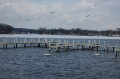 The piers in our marina as the ice melts away. Newport Cove residents get ready to play!