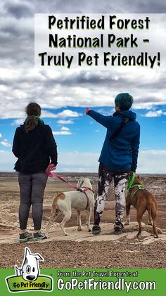 Petrified Forest National Park Is Truly Pet Friendly Petrified Forest National Park, National Forest, Pet Dogs, Pets, Hiking Dogs, National Parks Usa, Funny Dog Pictures, Dog Travel, Love Pet