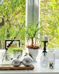 U nas dzisiaj słońce ☺☺☺ #kokonhome#wundow#sun#sunday#green#pumpkin#silver#glass#pots#vases#okno#słońce#zielone#doniczki#osłonki#dynie