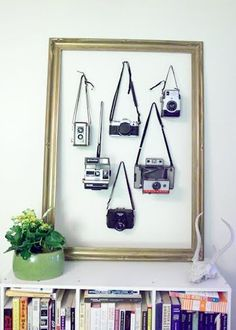vintage camera collection.  Hang them on the wall with a vintage frame.
