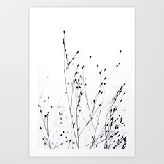 Buy BLACK GRASS Art Print by monikastrigel. Worldwide shipping available at Society6.com. Just one of millions of high quality products available.