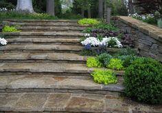 Caversham « Hess Landscape Architects