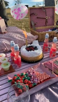 Picnic Date Food, Picnic Cake, Picnic Ideas, Beach Picnic Foods, Fall Picnic, Picnic Theme, Picnic Birthday, 18th Birthday Party, Girl Birthday