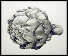 Artichoke by EvanLovejoyArt, via Flickr