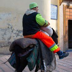 Beast of burden, Morrocco