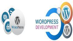 6 Best TIps to Improve WordPress Development Skills