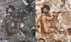 WINGED CHILD playing the FLUTE (detail), before and after cleaning. Spectacular 2,000-year-old Hellenistic-style wall paintings have been revealed at the world heritage site of Petra through the expertise of British conservation specialists. The paintings, in a cave complex, had been obscured by centuries of black soot, smoke and greasy substances, as well as graffiti. Three different vines, grape, ivy and bindweed – all associated with Dionysus, the ancient Greek god of wine – have been…