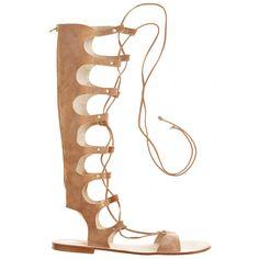 Conca Gladiator Knee High Sandal