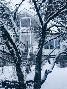 Home is where the hart is Snow, Outdoor, Winter, The Great Outdoors, Outdoors, Let It Snow