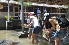 Objek wisata di Bali: Ubud, Tanjung Benoa, Kuta