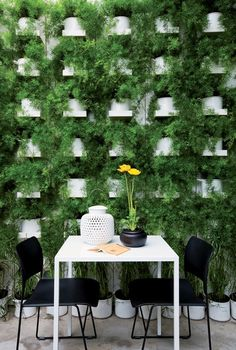 Perfect green wall. #Patio #Dinning #Oasis