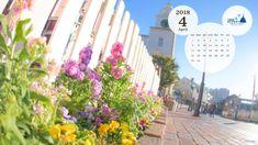 Disney Calendar, Best Street Food, Calendar Wallpaper, Disney Sleeping Beauty, Video Pink, Tokyo Disney Resort, Sleeping Through The Night, No Calorie Snacks, Bath And Beyond Coupon
