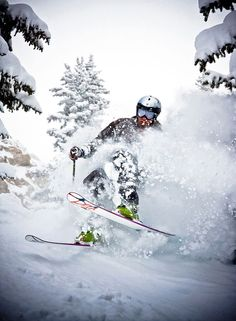 Alta Skiing Follow for follow, pin for pin!