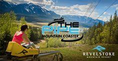 The Pipe Mountain Coaster|Revelstoke Mountain Resort|British Columbia, Canada